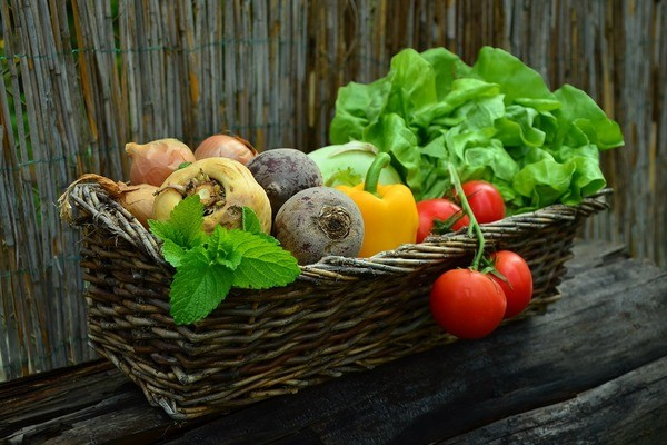 7 Reasons To Shift To Organic Foods As Soon As Possible
