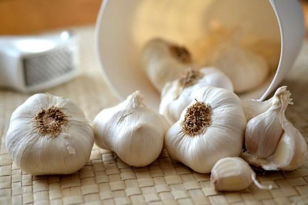 garlic-545223_1920-1