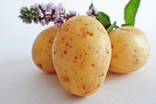 Potatoes Contain Toxins.jpg