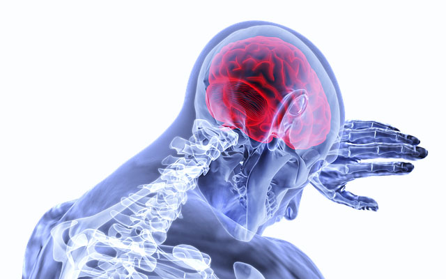 brain-3168269_640_400-1