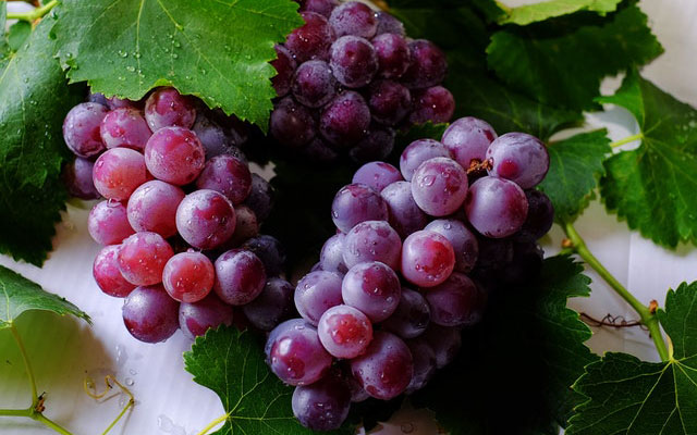 Eat Grapes Every Day for 2 Months and Here's What Happens