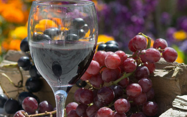 drink-fruits-grapes-88691_400