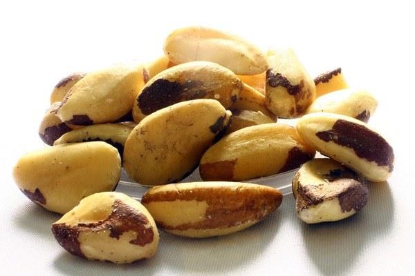 Zehirli gıdalar brezilya cevizi